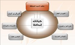 كيانات محافظة الوادى الجديد