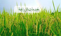 خدمات مديرية الزراعة