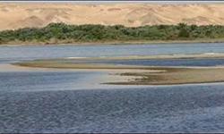السياحة البيئية بمحافظة الوادى الجديد