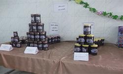 منتجات صناعة البلح بمحافظة الوادى الجديد